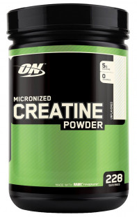 Optimum Nutrition Micronized Creatine powder (1200 г)